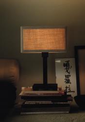 luminator люминатор \ Wood.